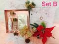 Myrtus gift Set B 官方皮秒限量聖誕套裝 <限量預訂中>