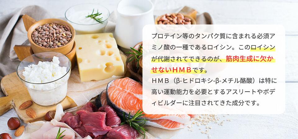 hmb03.jpg