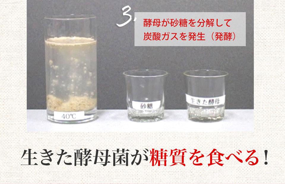 namakoubo-12.jpg