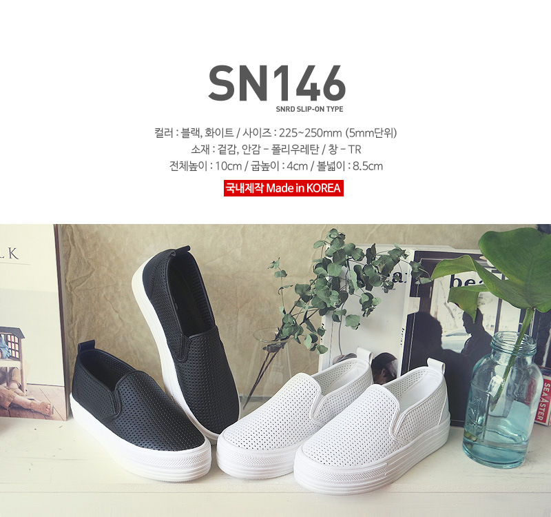 sn146-top.jpg